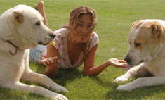Милота дня: Цой выложила детские фото собак