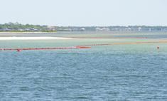 На дне Мексиканского залива обнаружены новые нефтяные пятна