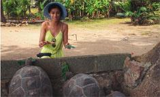 На Равшану Куркову напали черепахи