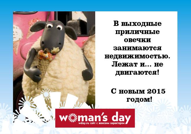 фразы овечка