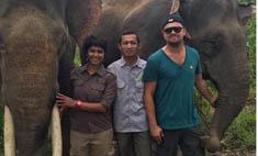 Ди Каприо запретят въезд в Индонезию из-за любви к слонам