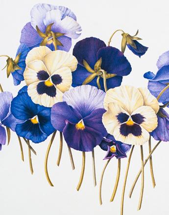 Цветочный принт - главный тренд сезона.
