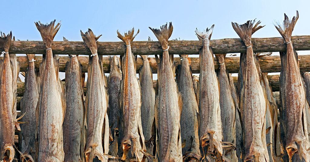 Как засушить рыбу в домашних условиях летом 90
