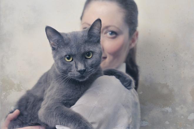 Обязательную регистрацию домашних кошек и собак ввели на Кубани