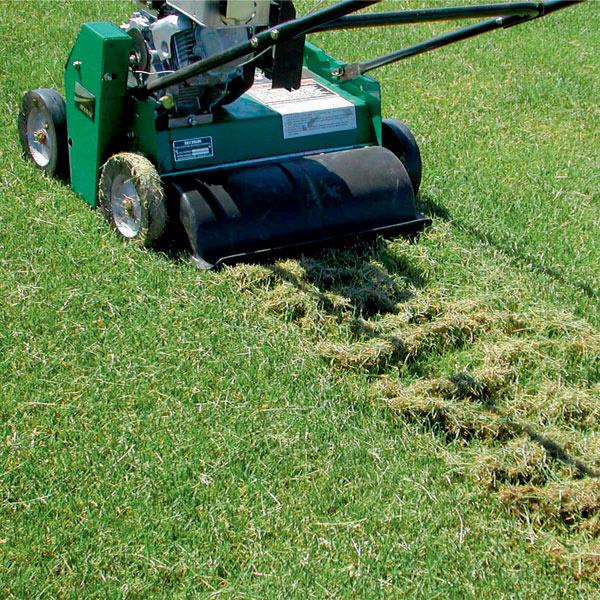 Для вычесывания соломы из газонной травы можно привлечь садовую технику.