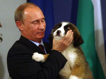 Владимир Путин рад новому знакомству