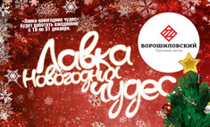 Поймай Деда Мороза в «Лавке новогодних чудес»