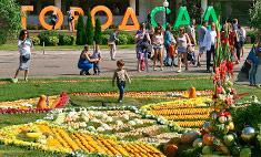 «Город-сад» в Воронеже: подробный фоторепортаж