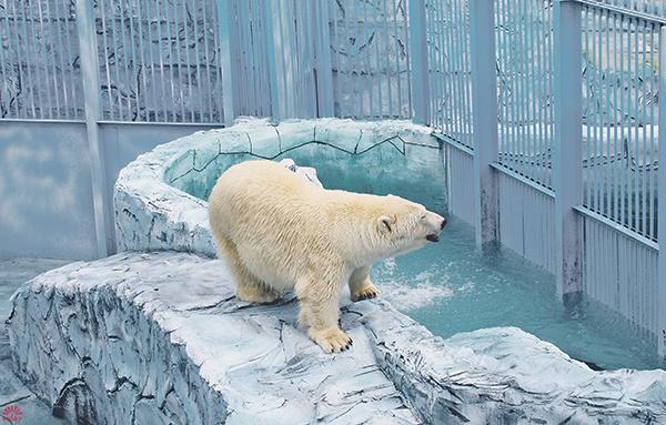 Екатеринбургский зоопарк, фото