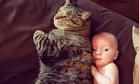 Милота дня: малыш не хочет спать без своей любимицы