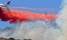 На ликвидацию пожаров у МЧС осталось четыре дня