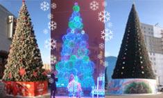 Топ-15 самых красивых елок Омска