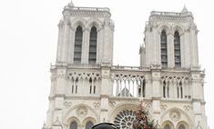 Анита Цой о новогоднем Париже