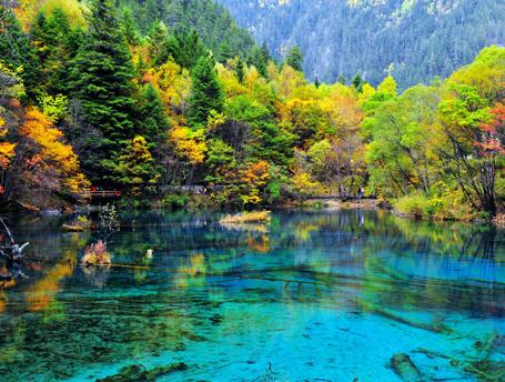 ELLE Inspiration: 5 лучших осенних парков