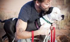 Онлайн-выставка бездомных животных, на которой ты можешь выбрать себе питомца, состоится 28 и 29 марта