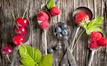Вкусное лето: как похудеть с помощью ягод