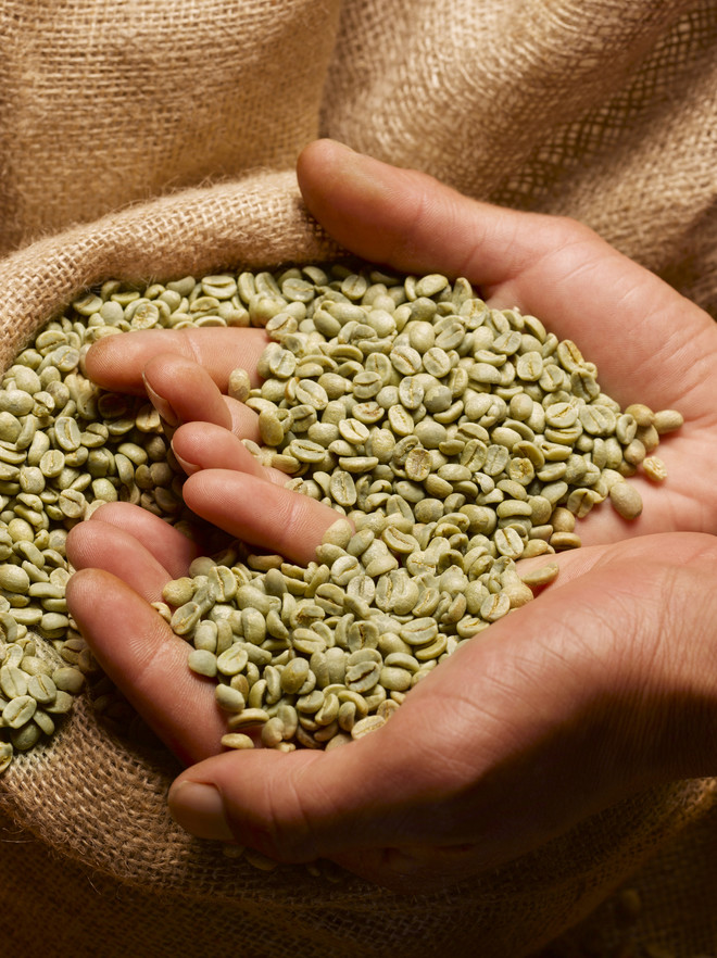 как заваривать зеленый кофе для похудения