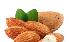 Королевский орех миндаль и его польза для организма