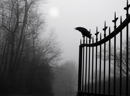 Ворон и ворота