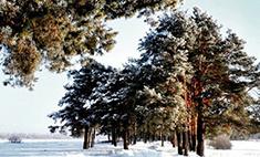 Из Вятки с любовью: 15 завораживающих зимних пейзажей