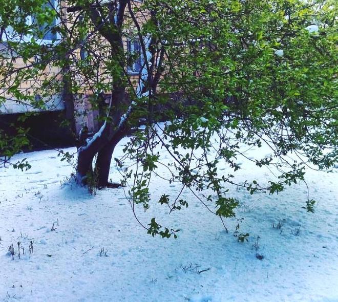 Снегопад в Красноярске