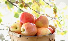 Топ-5 рецептов из яблок