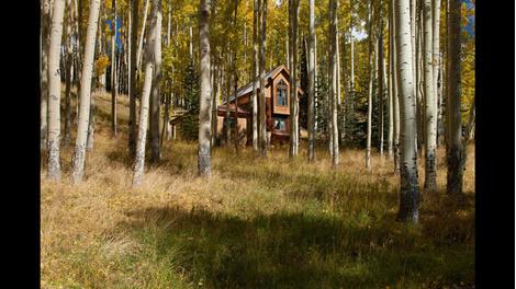 «Продам. Недорого»: Том Круз избавляется от недвижимости   галерея [1] фото [3]