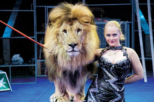 Ольга Борисова – единственная в России соло-дрессировщица львов. Она работает с пятью хищниками в клетке одна.