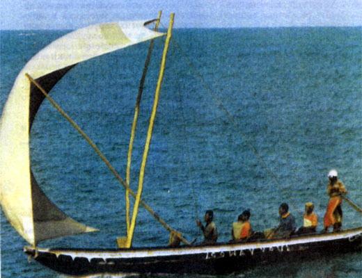 Фото №1 - Ожидание у моря