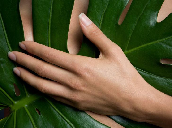 Фото №1 - Как сохранить молодость кожи рук