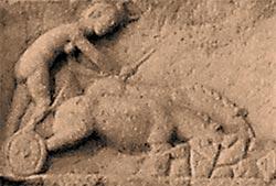 Фото №11 - Заходящее солнце античного язычества