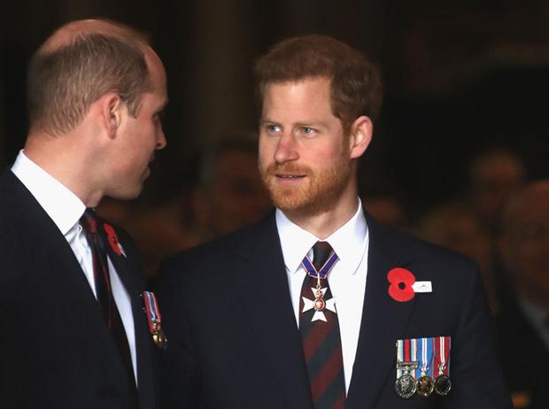 Фото №8 - Монарх нового времени: каким королем будет принц Уильям (и как он изменит Корону)