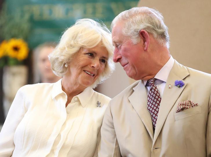 Фото №22 - Принц Чарльз и его Камилла: двое против всех