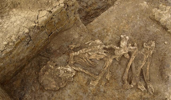 Фото №1 - Британцы бронзового века мумифицировали умерших