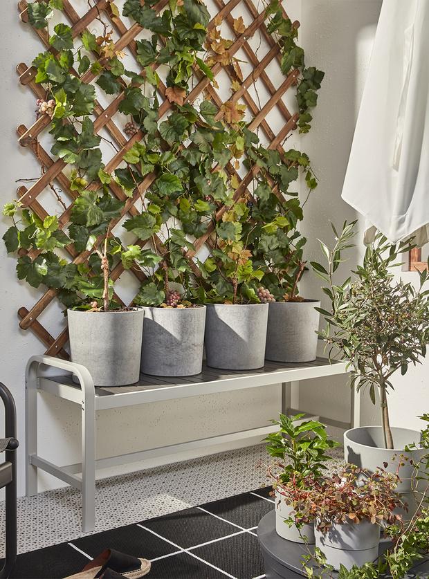 Фото №4 - Да будет цвет: 10 идей декорирования террасы