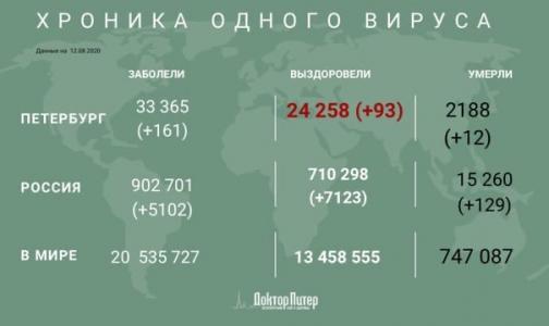 Фото №1 - За сутки коронавирус выявили 5 102 россиян
