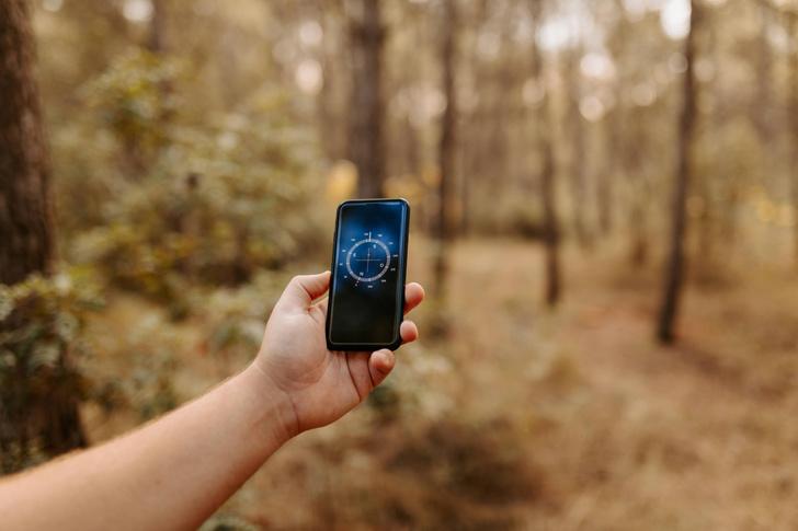 Фото №1 - Ориентация без навигатора: как вывести человека из лесной чащи по телефону?