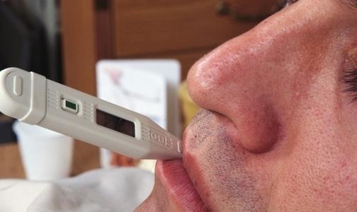Фото №1 - За неделю 16 петербуржцев попали в больницу с клещевыми инфекциями