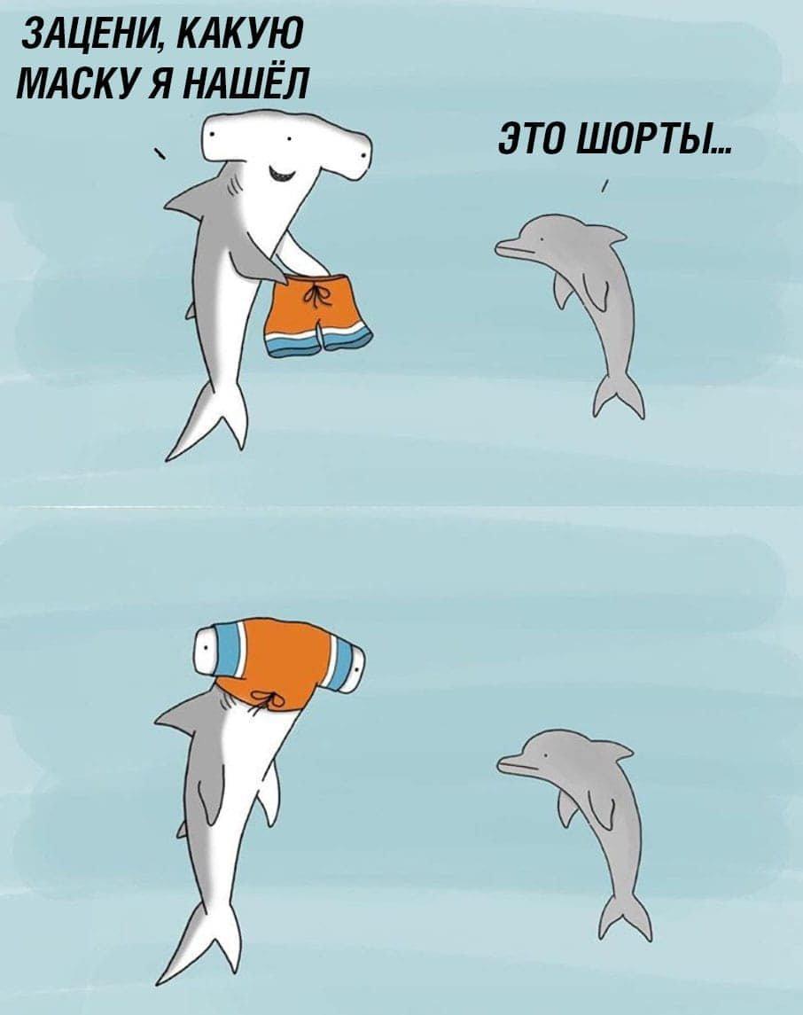 Пару забавных катнок для вас :-)