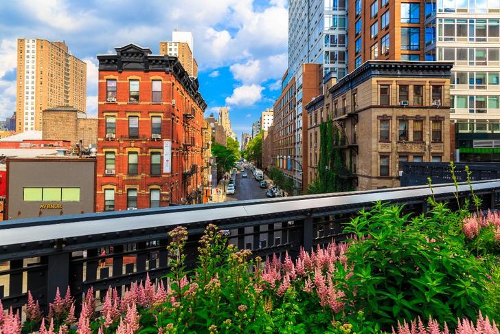 Фото №4 - Город секретов: прогулка по Нью-Йорку в 10 фотокарточках