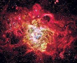 Фото №7 - Как рождаются звезды