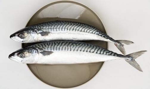 Фото №1 - В какой рыбе больше всего Омега-3
