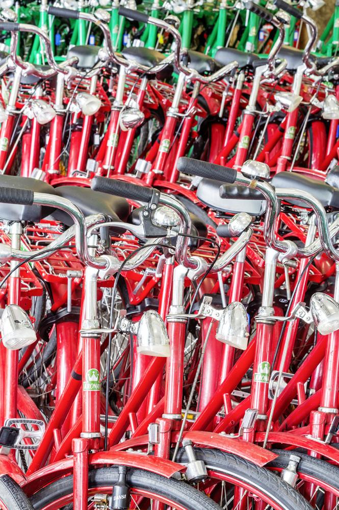 Фото №2 - Звенья одной цепи: Как голландцы заново изобрели велосипед