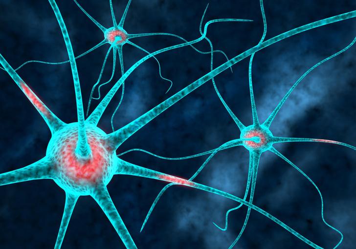 Фото №1 - Ученые впервые смогли определить, сколько кислорода нужно мозгу