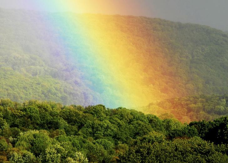 Фото №1 - Ученые насчитали 12 видов радуги