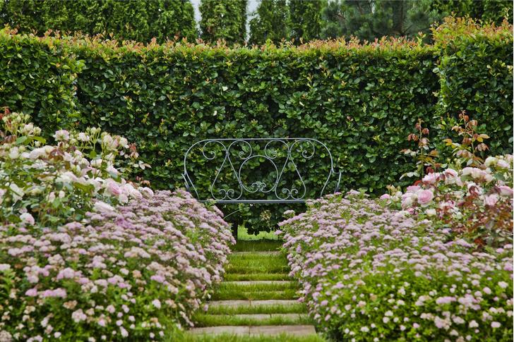 Фото №1 - Типичные ошибки в саду: советы дизайнеров