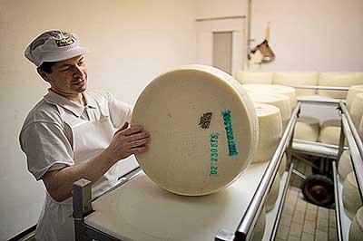 Фото №14 - Как и где делают настоящий пармезан