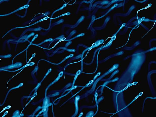 Фото №4 - 5 любопытных фактов о сперме, которые вы могли не знать
