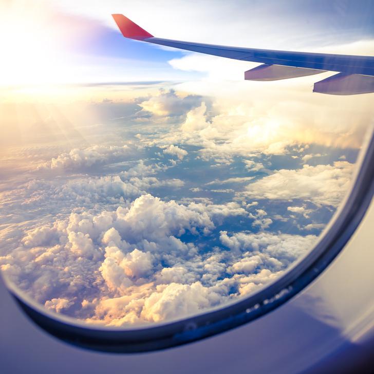 Фото №1 - Создан самовосстанавливающийся материал для самолетов