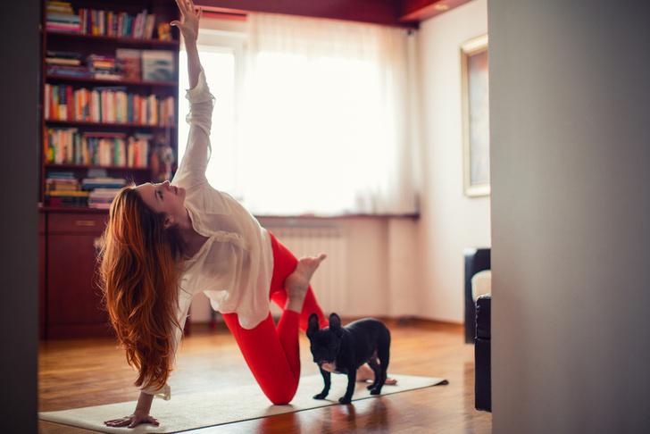 Фото №2 - DOGA: как научить собаку заниматься йогой вместе с вами